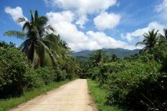 En bergsväg på väg till Sampao Rice Terraces, Biliran.