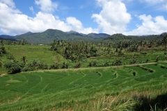 Sampao Rice Terraces, Biliran.