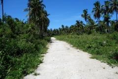 Vägen ner till Borromeo Beach, Pacijan.