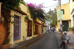 Gatuscen i Getsemani, Cartagena.