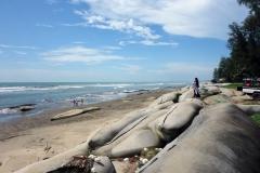 Barriärer längs Cox's Bazar beach för att förhindra erosion av stranden.