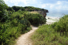 Stig som leder ner till Coco Beach, Dar es-Salaam.