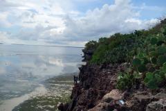 Kustlinjen söder om Coco Beach, Dar es-Salaam.