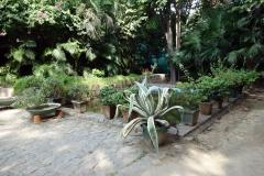 Lodhis trädgårdar, Delhi.