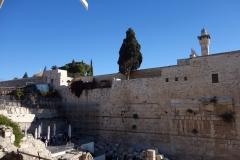 Del av Tempelberget synlig från kön till rampen som leder upp till entré Bab Al Maghariba (den enda entré turister kan ta upp till Tempelberget), Jerusalem.