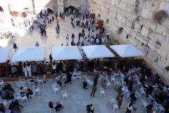 Del av Västra muren (Western Wall), Jerusalem. Längst bort i bild avdelningen för män och närmast i bild avdelningen för kvinnor.
