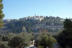 Utsikten mot Olivberget från Tempelberget, Jerusalem.
