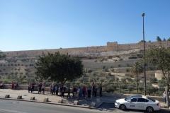 På andra sidan gatan från Alla Nationers kyrka (Church of All Nations) syns en del av Tempelberget, Jerusalem.