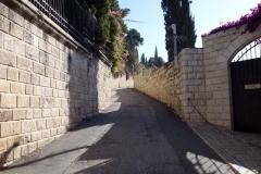 Promenaden upp till Olivberget, Jerusalem.