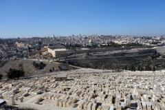 Utsikt över judiska gravar på Olivbergets sluttning med Tempelberget i bakgrunden, Jerusalem..