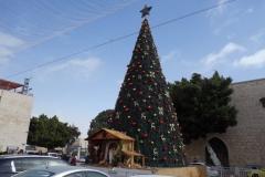 Julgranen utanför Födelsekyrkan, Manger Square, Betlehem, Västbanken.