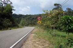 På väg ner längs den vackra vägen genom Preah Monivong Bokor National Park, Kampot province.