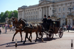 Häst och vagn med Buckingham Palace i bakgrunden.