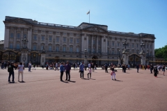 Buckingham Palace, Westminster.
