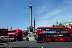 Trafalgar Square och Nelson's Column, West End.