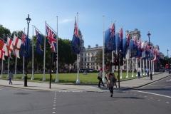 Parliament Square Garden, Westminster.