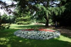 Greenwich Park.