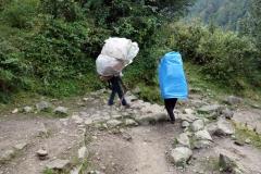 Sherpas med tung last.