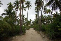 Vägen som går precis bakom stranden, Matemwe, Unguja.
