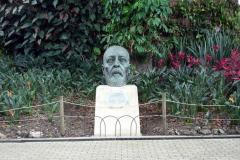 Jardín Botánico Joaquín Antonio Uribe, Medellín.