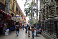Vid Palacio de la Cultura Rafael Uribe Uribe, Medellín.