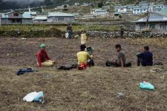 Vilopaus under potatisplockning i Khumjung.