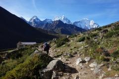 Kantega (6782 m) och Thamserku (6623 m) sedd från Orsho (4190 m).