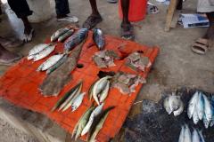 Fiskmarknaden i Nungwi, Unguja.