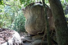 Parque Nacional Natural Tayrona.