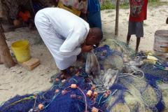 Det första jag möts av när jag kommer ner till stranden är fiskare med en rejäl fångst bläckfisk, Jambiani.