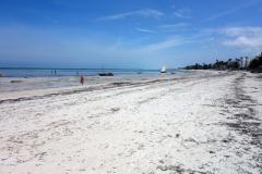 Jambiani Beach.