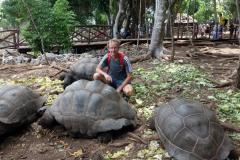 Stefan omgiven av fyra stora aldabrasköldpaddor, Prison Island.