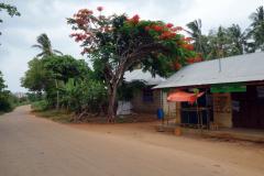 Den lilla vägen genom den lilla byn Fumba, Unguja.