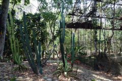 Parque Natural El Gallineral, San Gil.