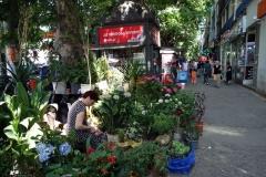 Försäljning av blommor i centrala Tbilisi.