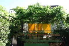 Trädgården tillhörande Orida Royal, Tbilisi.