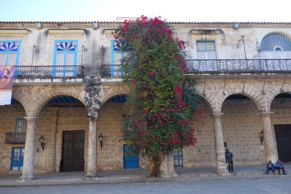 Palacio de Lombillo, Plaza de la Catedral, Habana Vieja, Havanna.