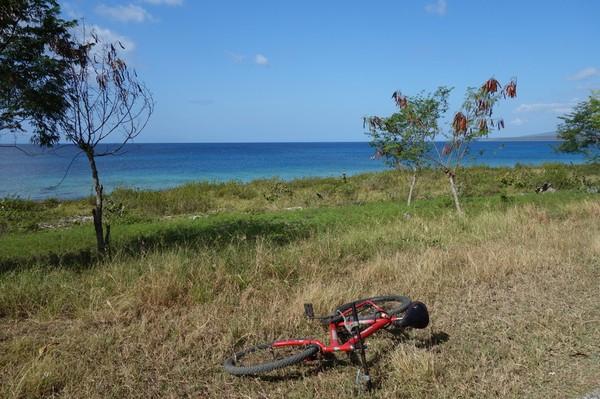 Längs vägen mellan La Boca och Playa Ancon.