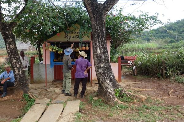 Liten fruktaffär med frukt av högsta klass längs vägen, Valle de Viñales.