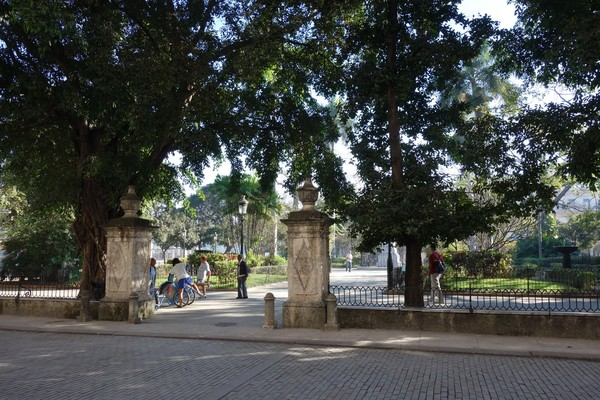 Träbelagd gata för att dämpa ljudet från hästhovar, utanför Palacio de los Capitanes Generales, Plaza de Armas, Habana Vieja, Havanna.