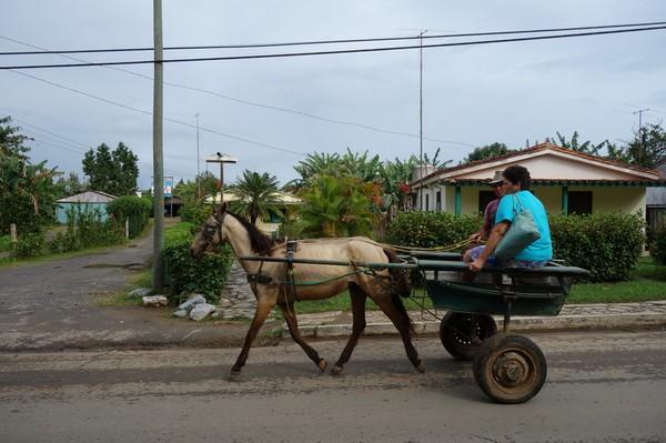 Häst och vagn, vanligt transportsätt i Valle de Viñales.