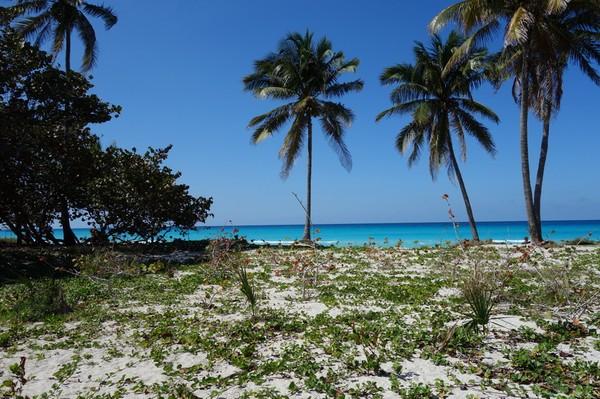 Stranden vid hotell Club Herradura, Varadero.
