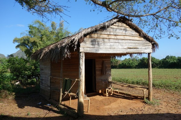 Mindre byggnad bedvid ladan där man torkar tobak, Valle de Viñales.