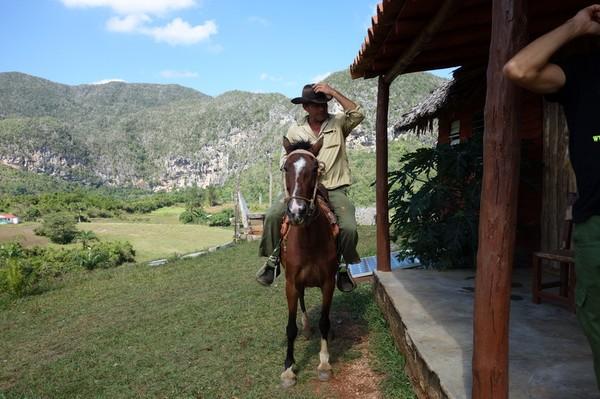 Ytterligare en trevlig cowboy som ville hälsa på mig, Valle de Viñales.