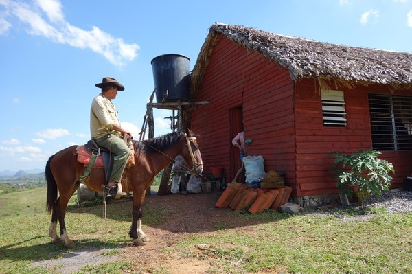 Samma cowboy igen, Valle de Viñales.