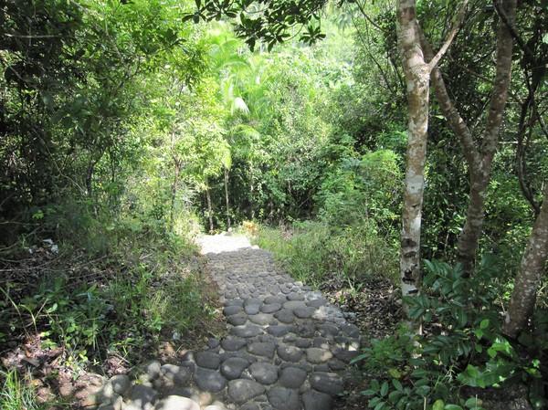 Stigen ner till Cambugahay falls.