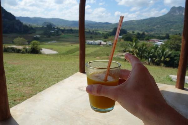 Underbart gott med färskpressad mangojuice efter en halv dags trekking, Valle de Viñales.