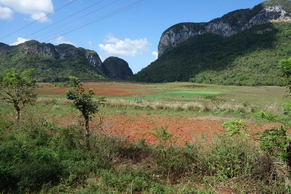 Ännu mer av den fantastiska naturen, tillbaka i Valle de Viñales.