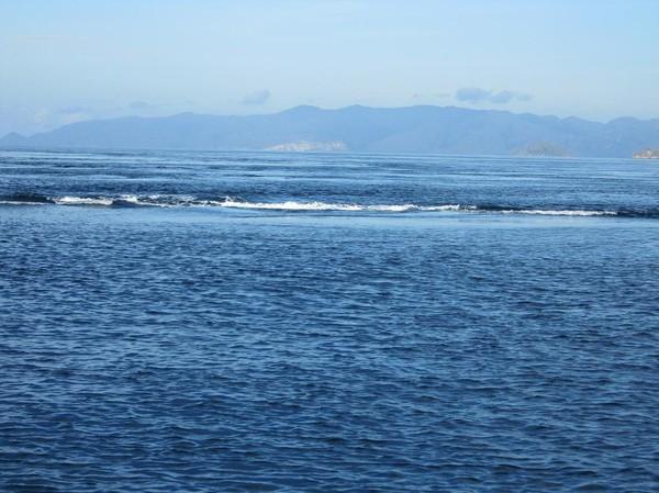 När vi börjar närma oss Komodo island så ser det ut som att havet börjar koka! Det är de starka havströmmarna som omger öarna i skärgården i Komodo national park som visar sig. Det tog en stund att förklara fenomenet för mina koreanska vänner.