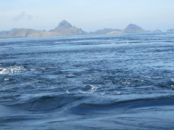De starka havströmmarna i vattnen runt Komodo island.